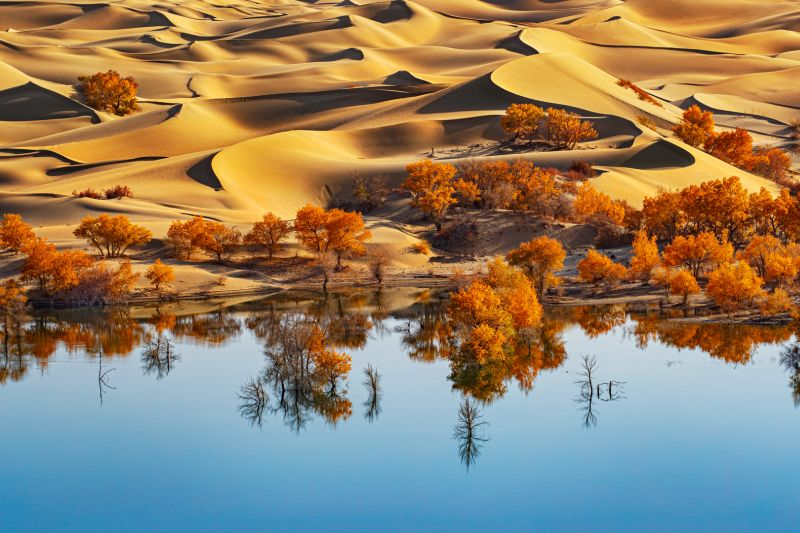 The Desert With Water, Chan  Ching Ching , Hong Kong
